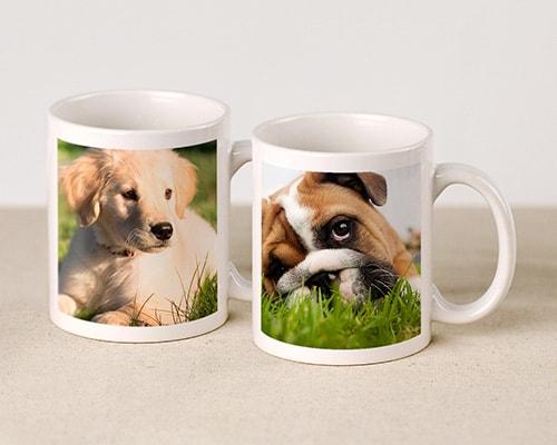 Fototassen mit Hundefotos