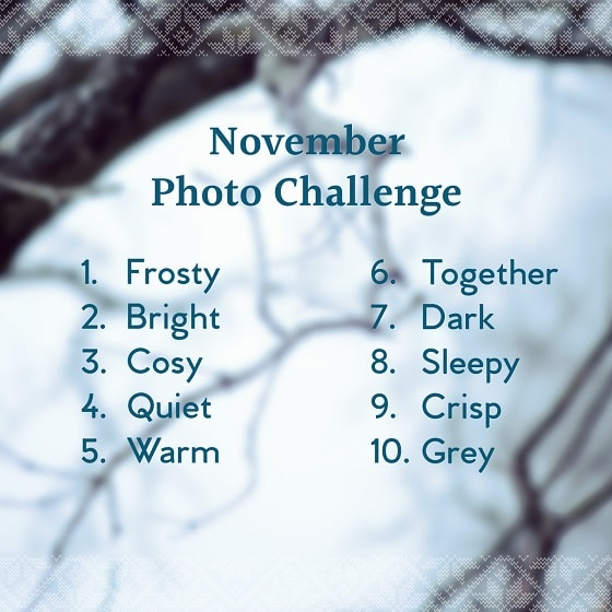 Go to the winter photo challenge
