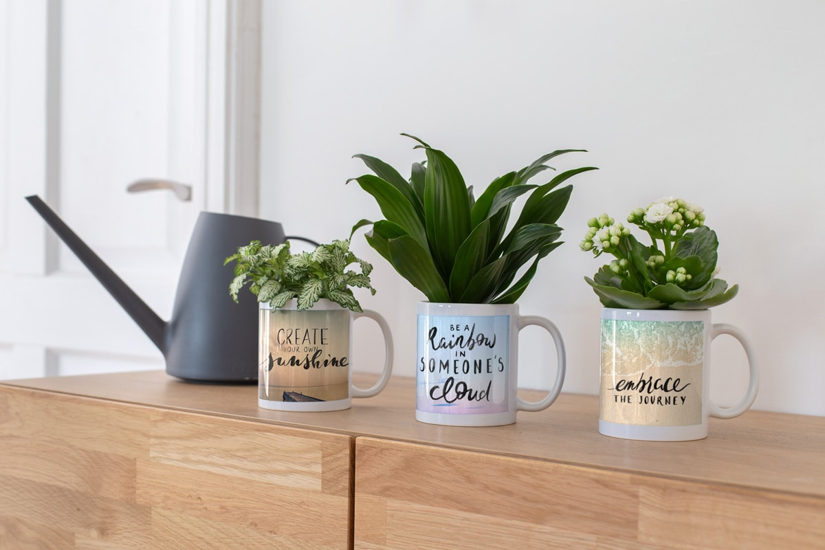 Redecorate-space-photo-products-mugs-plant-pots