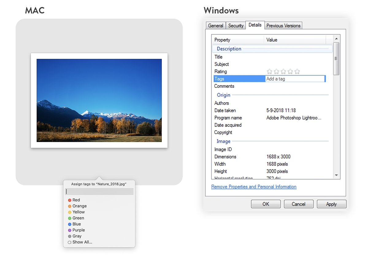 A thumbnail of a photo of mountains on the left, with a file renaming drop down menu underneath. On the right, there's a screenshot of the file naming process on a Windows computer.
