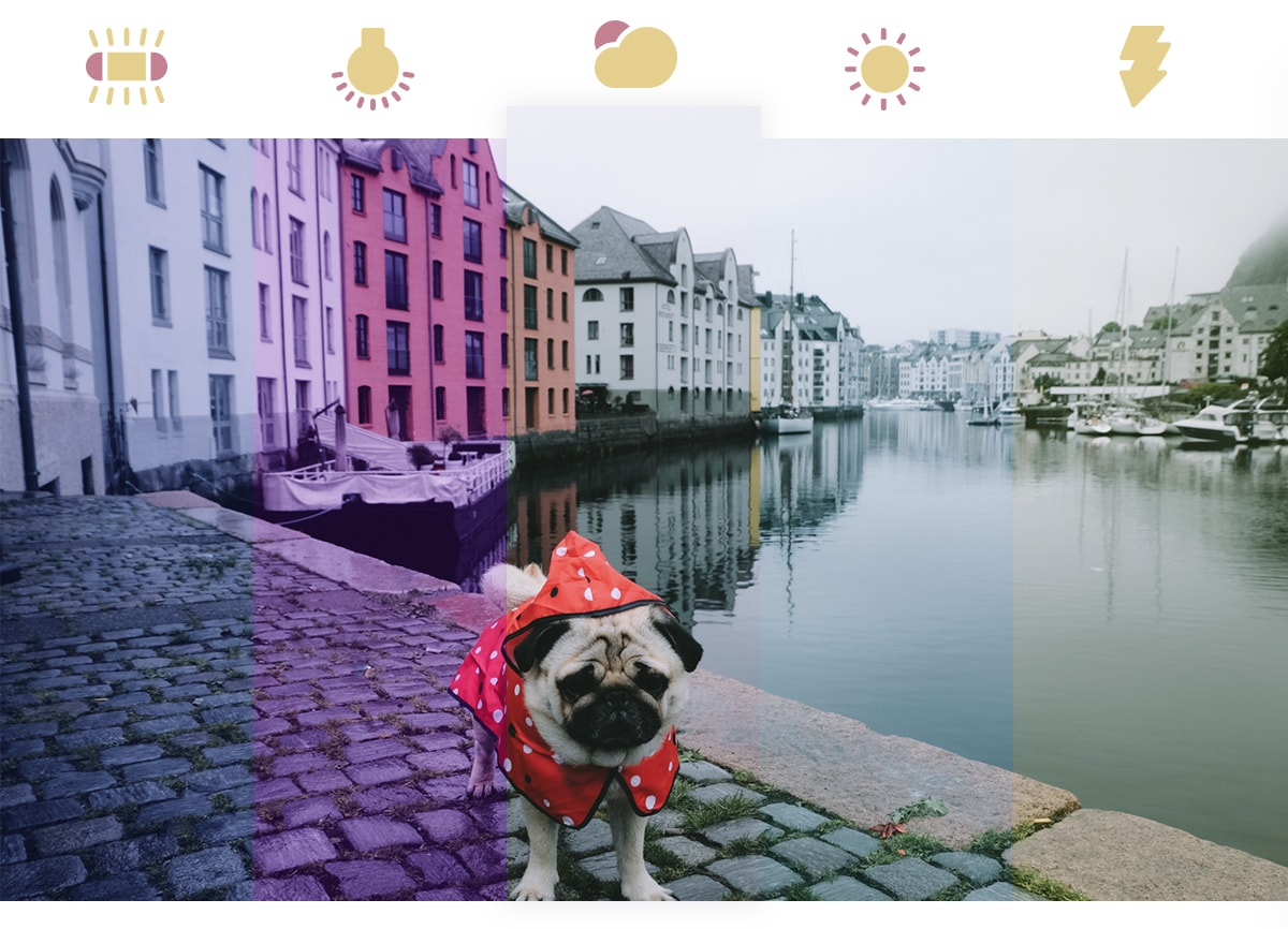 A photo of a pug dog in a red raincoat. The photo shows how white balance can alter the tones in an image; it's divided into five shades with icons of different camera presets above it.