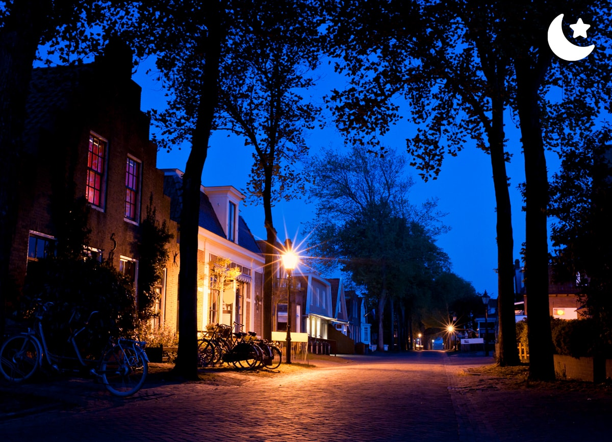 A quiet suburban street, covered with trees, taken at night.