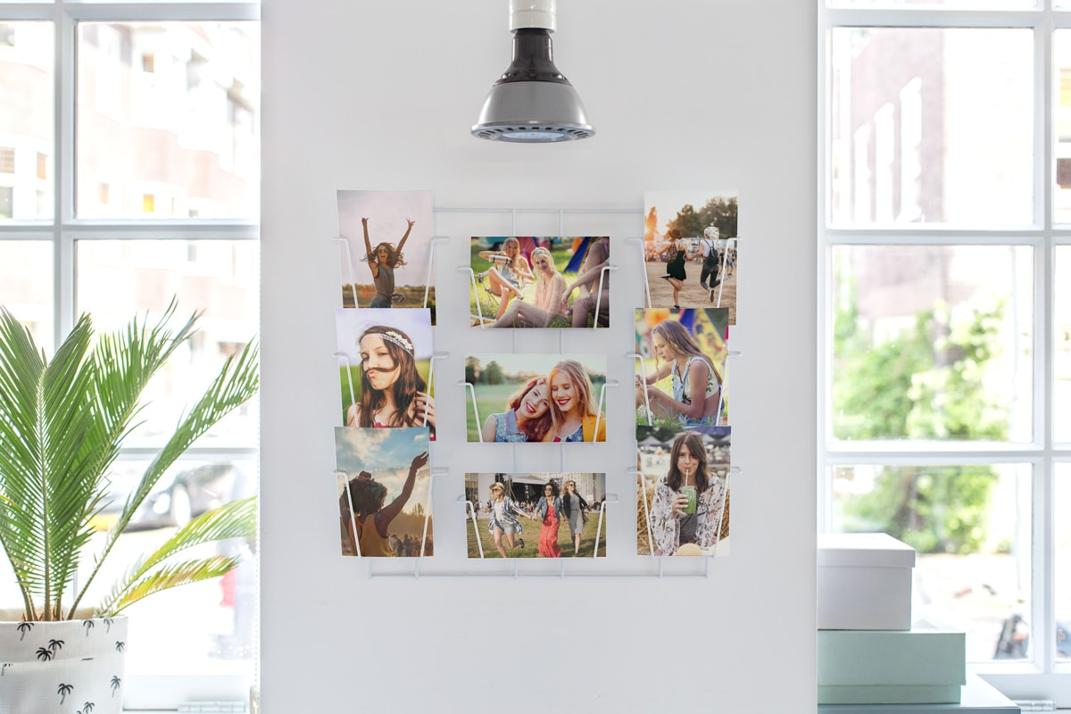 A selection of photo prints with festival photos on, in wire racks on a wall, next to a window, surrounded by plants.