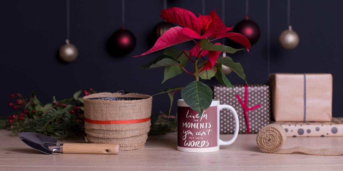 5 id es de mugs personnalis s pour offrir le cadeau. Black Bedroom Furniture Sets. Home Design Ideas